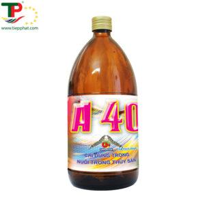 (Tiếng Việt) A 40