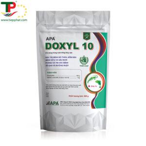 APA DOXYL 10