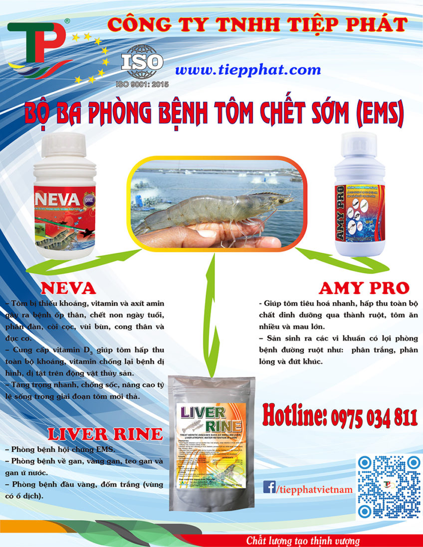 (Tiếng Việt) Bộ 3 phòng bệnh Tôm Chết Sớm (EMS)