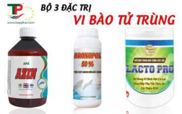 (Tiếng Việt) Bộ 3 đặc trị Vi Bào Tử Trùng cho Tôm