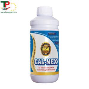 (Tiếng Việt) CAL-MEX