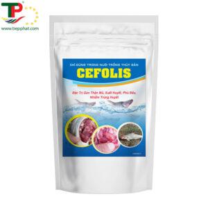 CEFOLIS