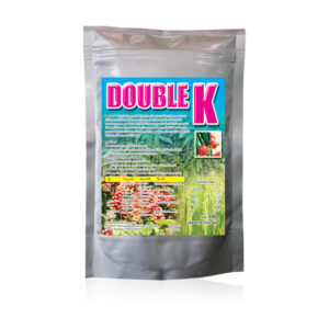 (Tiếng Việt) DOUBLE K