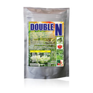 (Tiếng Việt) DOUBLE N