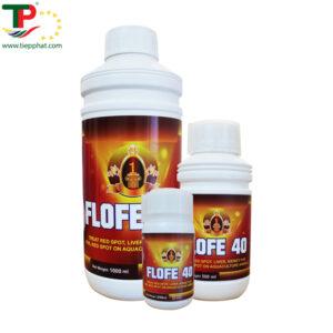 (Tiếng Việt) FLOFE 40
