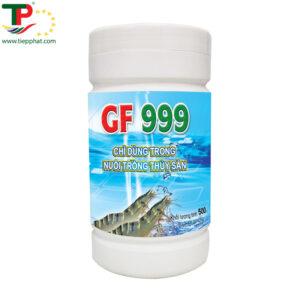 (Tiếng Việt) GF 999