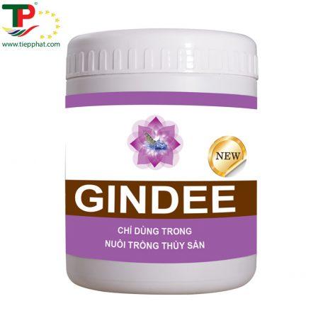 GINDEE