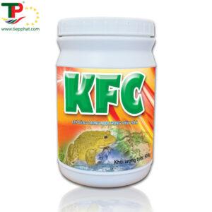 (Tiếng Việt) KFC