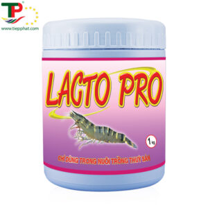(Tiếng Việt) LACTO PRO