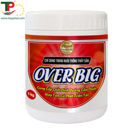 OVER-BIG_Shrimp