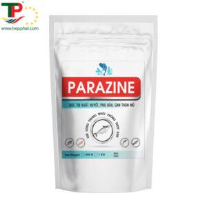PARAZINE