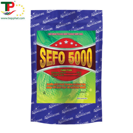 SEFO-5000