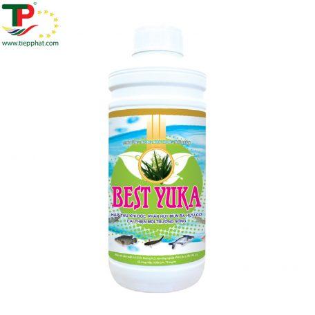 TP_BEST YUKA_Fish