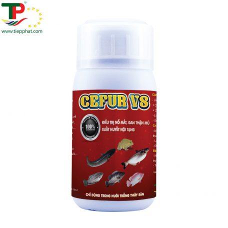 TP_CEFUR VS_Fish