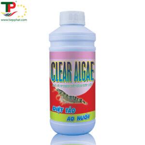 CLEAR ALGAE