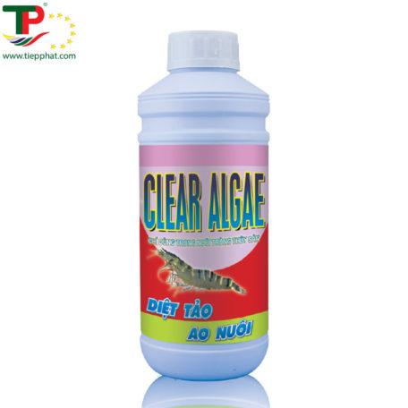 TP_CLEAR ALGAE_Shrimp