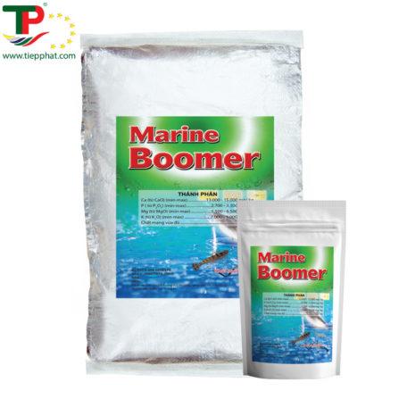 TP_MARINE BOOMER_Shrimp