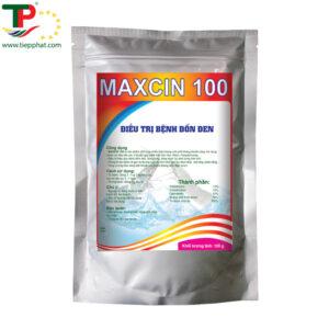 (Tiếng Việt) MAXCIN 100