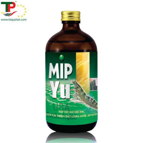 TP_MIP YU_Shrimp