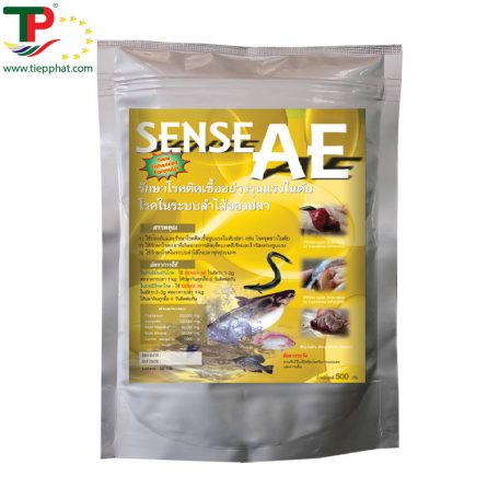 TP_SENSE AE_Fish