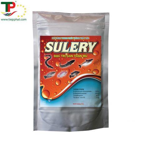 TP_SULERY_Fish