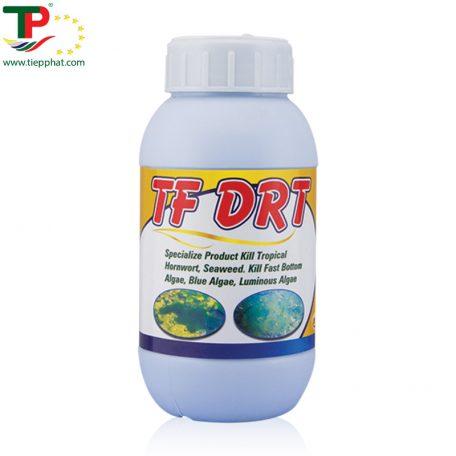 TP_TF-DRT_Fish