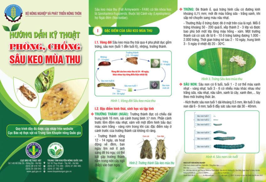 Tài liệu hướng dẫn kỹ thuật PHÒNG, CHỐNG SÂU KEO MÙA THU