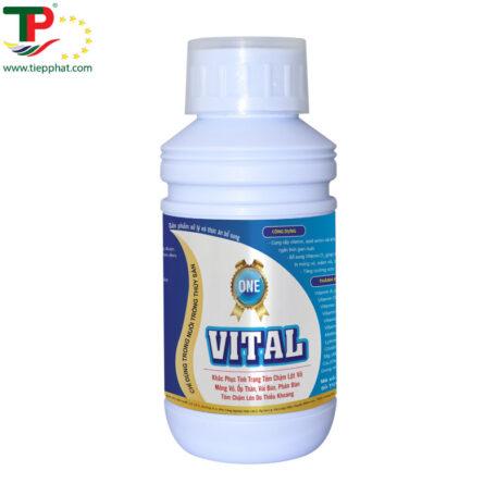 VITAL-ONE
