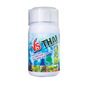 VS THAI