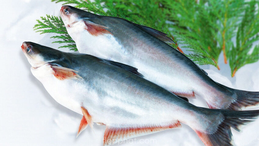 Algeria welcomes Vietnamese farm produce