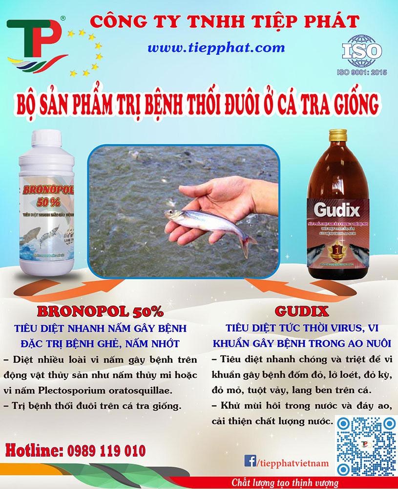 Bộ đôi sản phẩm Trị Bệnh Thối Đuôi ở Cá Tra giống