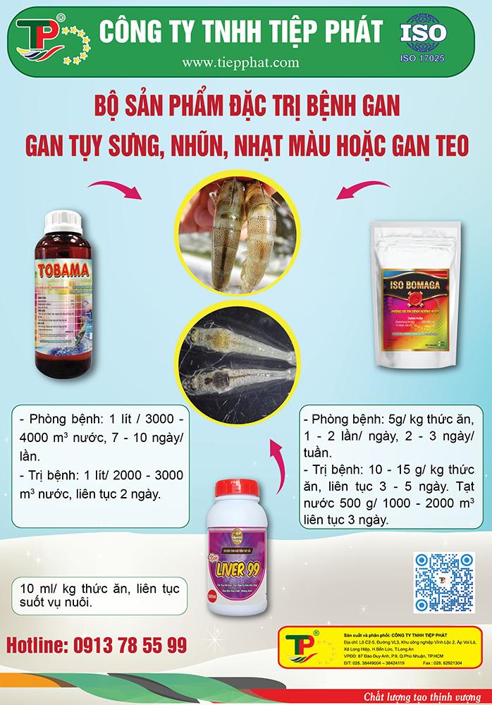 Bộ sản phẩm đặc trị Bệnh Gan ở Tôm, gan tụy sưng, nhũn, nhạt màu hoặc gan teo