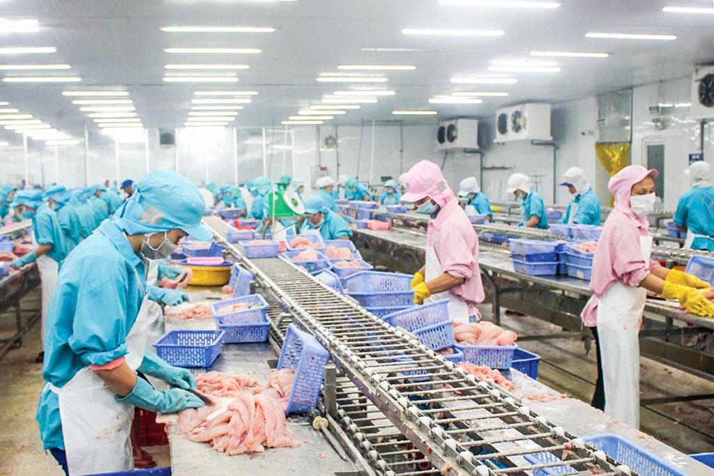 Cần Thơ: Các lĩnh vực thiết yếu được ưu tiên mở cửa sản xuất trở lại