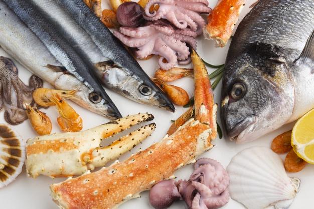 CPTPP: Cam kết về sở hữu trí tuệ đối với ngành thủy sản