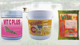 Sử dụng Vitamin C trong nuôi trồng thủy sản